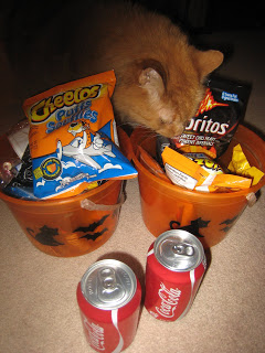 Aries dressed up as a cat eating Halloween candy