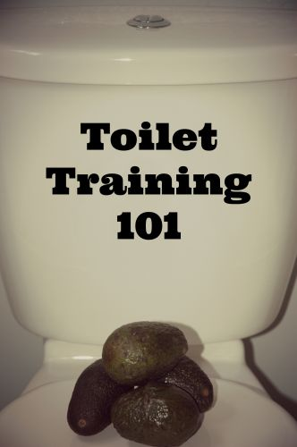 Toilet Training 101