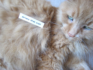 Aries the Cat gets Labelled