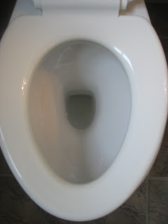 Clean Toilet After Using Lysol 1