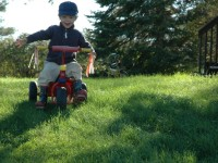 Max a Riding Tricycle1