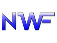 Nolan-Wilson-Company-Logo