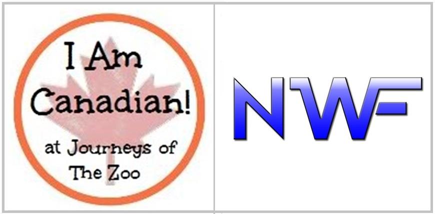 iamcanadian-feature-october-nolan-wilson-freelance