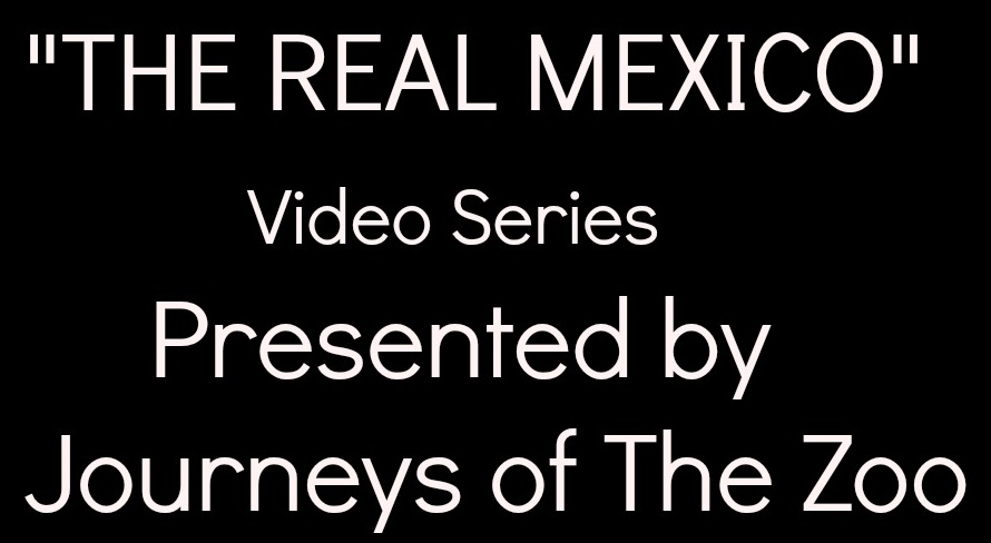 The Real Mexico Video Series Button