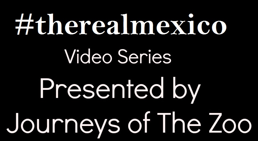 therealmexico video logo