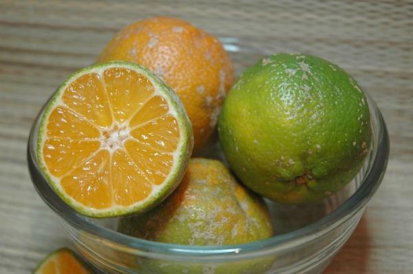 Orange Limes Mexico