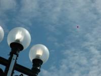 A Balloon For Alexander