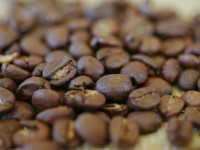 Stock-Coffee Beans-600