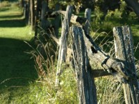 living in the country picket fence