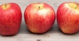 Three Apples Thumbnail