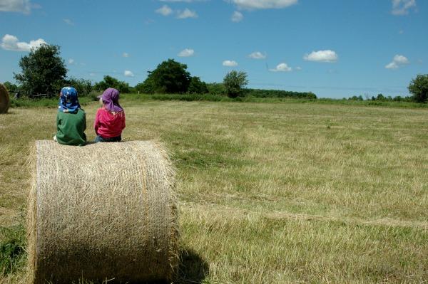 140725-Farm-Hay Bales