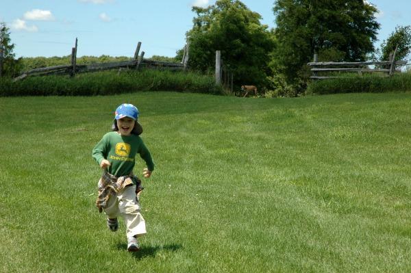140725-Farm-Max Running