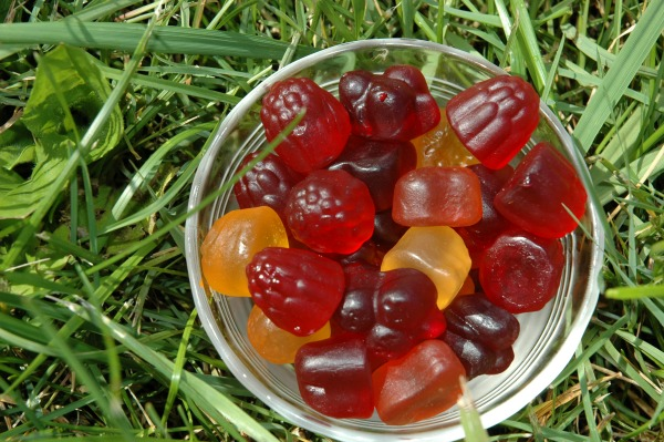 Dare Candy Company Realfruit Gummies