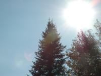 Sun Shining Rebirth