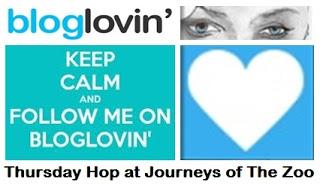 BlogLovin Hop Logo