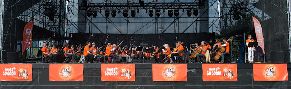 Iams So Good Doggie Jam Orchestra
