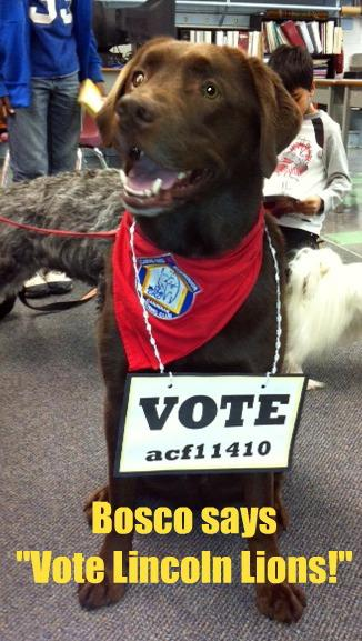Lincoln Centennial Dog Vote Sign