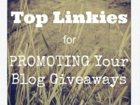 Top Linkies Blog Giveaways-500